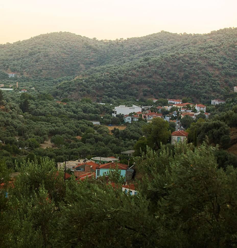 Lesvos hilltops