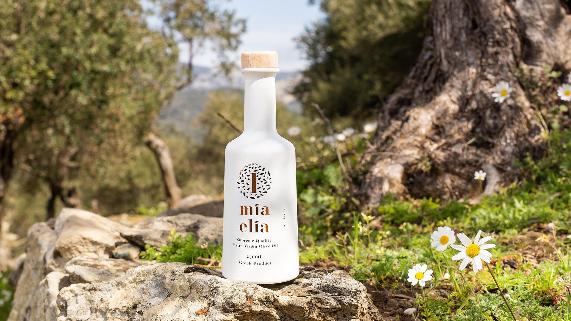 Mia Elia Olive Oil Bottle