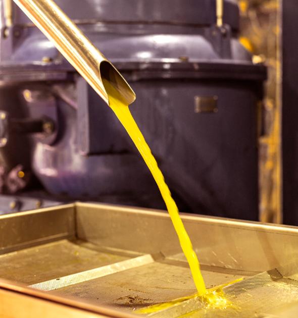 olive oil flow